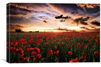 The RAF's Finest, Canvas Print