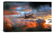 Crimson Bomber, Canvas Print