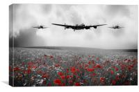 Memorial Flight - Red, Canvas Print