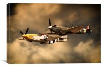 Old Flying Machines, Canvas Print