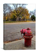 Chicago Hydrant, Canvas Print