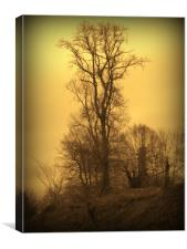 Lone Tree. A Winters Tale., Canvas Print