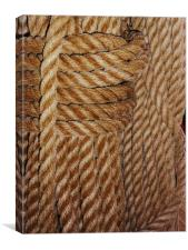 Old Rope., Canvas Print