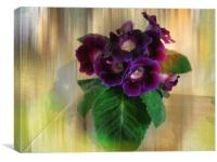 Sweet Violets., Canvas Print