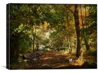 The Carriageway., Canvas Print