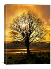 Tree of Fire, Canvas Print