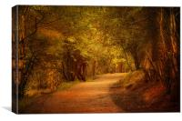 The Pathway ., Canvas Print