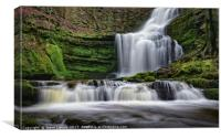 Scaleber Foss, Canvas Print