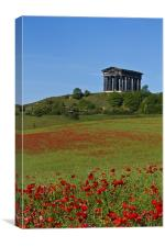 Penshaw Monument Poppies, Canvas Print