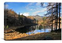 A Wonderful View of Blea Tarn, Canvas Print