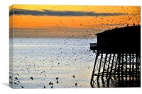 Starlings At Sunset, Canvas Print