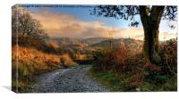 Little Langdale, Canvas Print