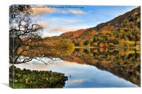 Rydalwater, Lake district., Canvas Print