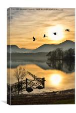 Geese In The Golden Hour., Canvas Print