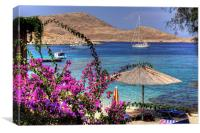 Bougainvillea at Ftenagia, Canvas Print