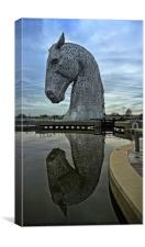 Kelpie Reflected, Canvas Print