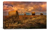 The Hayfield, Canvas Print