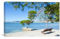 Rest On The Pine Walk in Puerto Pollensa, Canvas Print