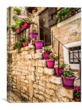 Plant pots and Stairs, Canvas Print