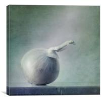onion, Canvas Print