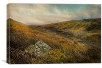 The Forest of Bowland, Canvas Print