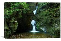 St Nectans Glen , Canvas Print