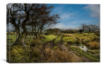 Winter in Bowland, Canvas Print