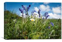Bluebells and friend, Canvas Print