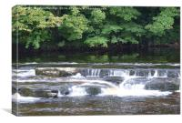 Richmond Falls. , Canvas Print