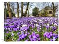 St Chads Church in Springtime.., Canvas Print