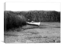 Reed All About It, Canvas Print