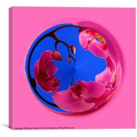Spherical Orchids, Canvas Print