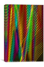 Feathers in Abstract, Canvas Print