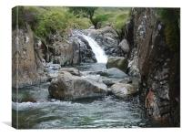 Stockley Ghyll, Canvas Print