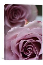 Cool Water Rose, Canvas Print