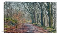 An Winters Walk throught the Woods, Canvas Print