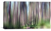 Pine forest, Canvas Print