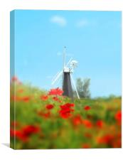 Windmill in the summer, Canvas Print