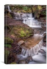 The Waterfalls of Lumsdale, Canvas Print