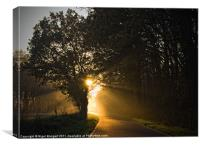 Winter Sunlight, Canvas Print