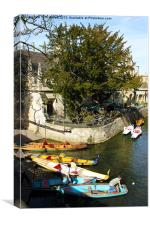 Oxford Punts, Pedalos and Rowing Boats, Canvas Print