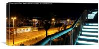 Torquay Royal Terrace Gardens Steps At Night, Canvas Print