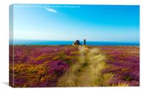 The Path To Wheal Coates, Canvas Print