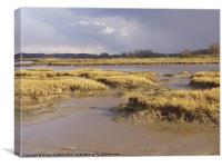 Kyson Point Estuary, Woodbridge, Suffolk, Canvas Print