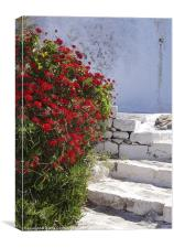 Kastro walk, Milos, Canvas Print