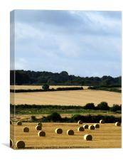 Hay bales in Bedfordshire, Canvas Print