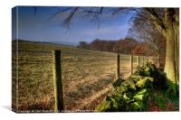 Chevin Dry Stone Wall #1, Canvas Print