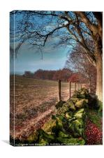 Chevin Dry Stone Wall #2, Canvas Print