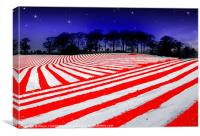 Star spangled sky., Canvas Print
