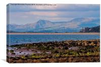 A View from Shell Island, Canvas Print